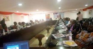 Mme-Adwoa-Atta-Krah-Directrice-siege-USAID-Mali-SIRA-conference