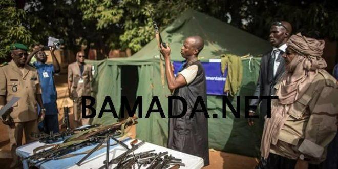 Consolidation de la paix au Mali : cas d'Ansongo, de Bourem et Gao : IMRAP formule des fortes recommandations