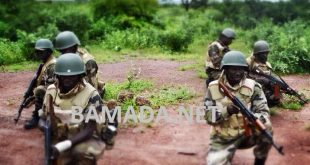 force-armee-malienne-fama-soldat-militaire-entrainement-formation-waraba