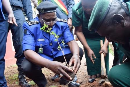 Directeur-régional-Police-Koulikro-plantation-arbre