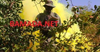 armee-malienne-soldat-fama-militaire-embuscade-nord-patrouille-formation-serval-barkhane-france-union-europenne-eucap-eutm