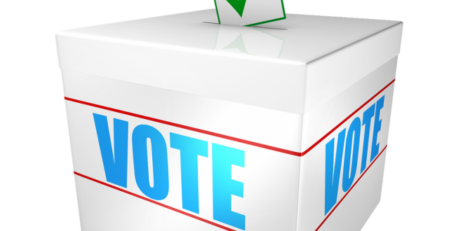 LEGISLATIVES 2020: 159 listes de candidatures, dont 18 indépendantes, déposées à Bamako
